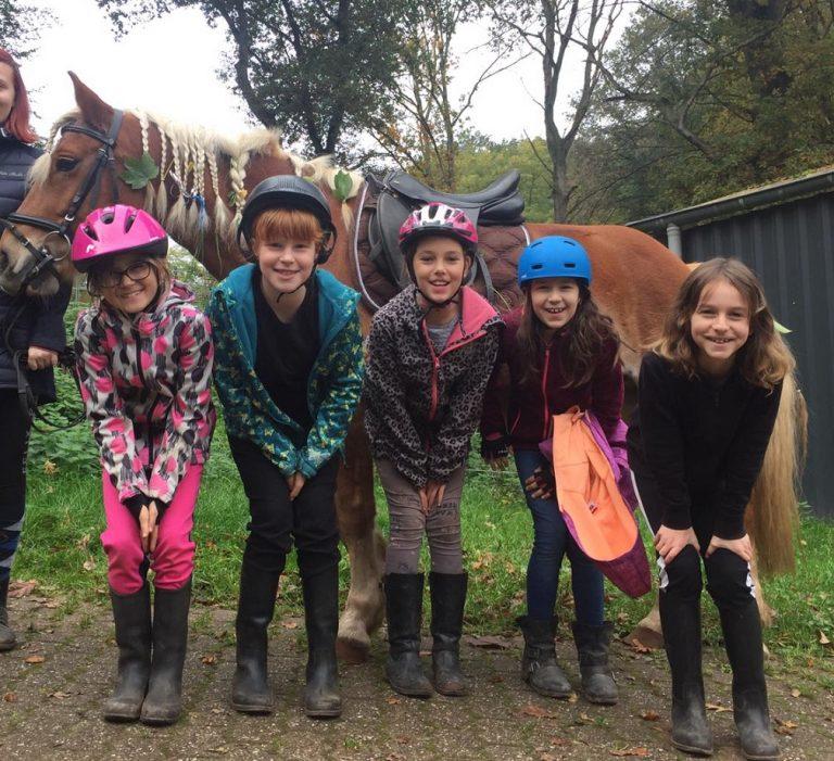 Reiterfreizeit: Sommer für Mädchen
